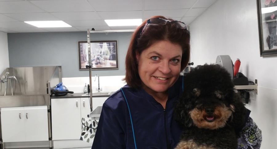 Sue Oliver Dog Grooming Studio
